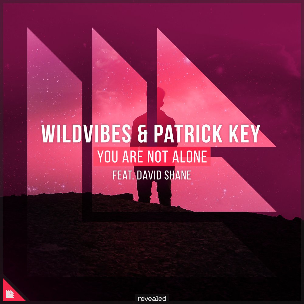 You Are Not Alone  - Wildvibes⁠ & PatrickKey⁠ feat. David Shane⁠