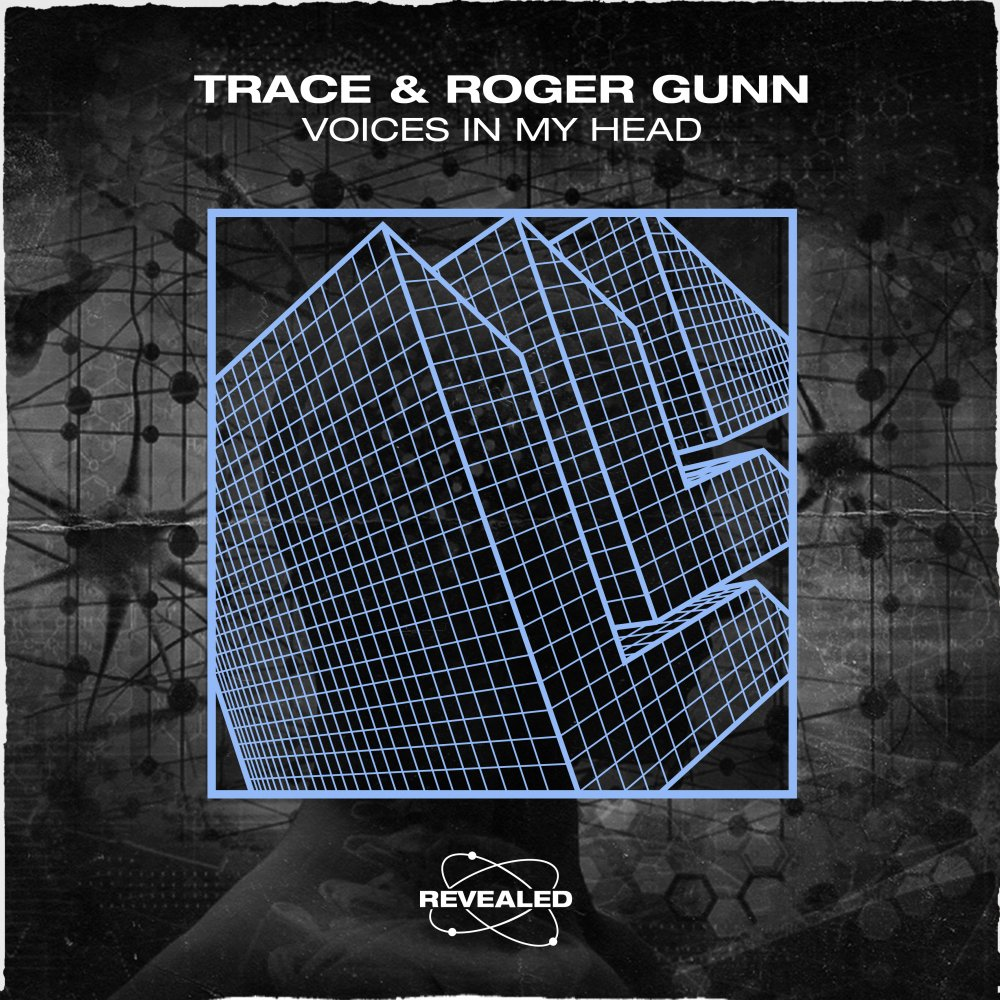Voices in My Head -  Trace⁠ Roger Gunn⁠