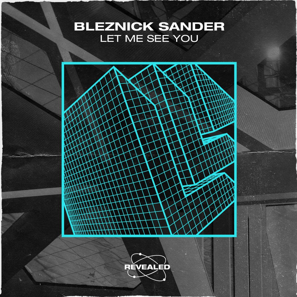 Let Me See You - Bleznick Sander⁠