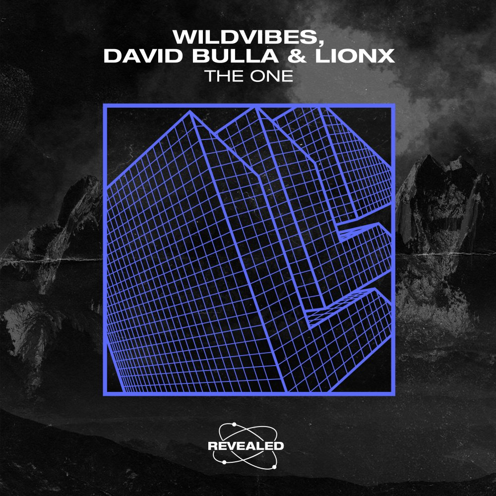 The One - Wildvibes⁠ David Bulla⁠ LionX⁠