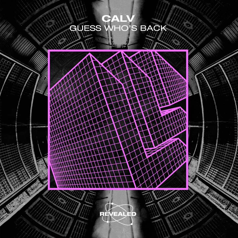 Guess Who's Back - CALV⁠