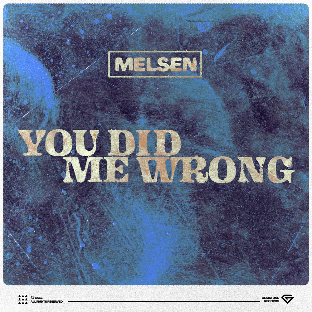 You Did Me Wrong - Melsen⁠